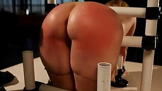 Blonde amateur babe in device bondage great ass spanked