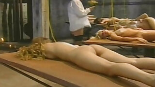 Porn movie scene taken from The Ass Collector